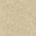 2400 Champagne Limestone - Caesarstone